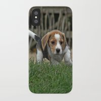 puppies iPhone & iPod Cases featuring Beagle puppies by Martina Berg