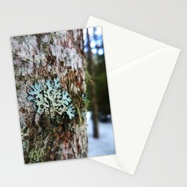 Musk in the snow Stationery Cards