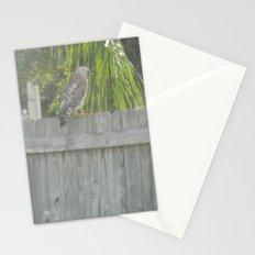 Falcon gazing Stationery Cards