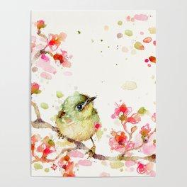 Mr Fluffy Pants (bird) Poster