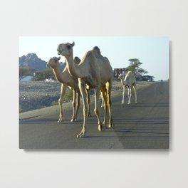 Camel Trophy  Metal Print