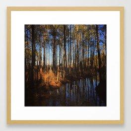 Fresh Pond Framed Art Print