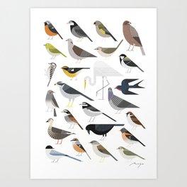 25 Birds Art Print