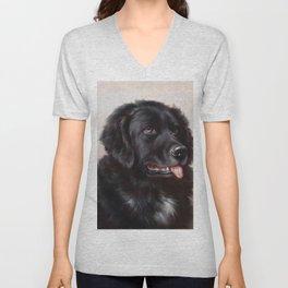 The Newfoundland Dog - Carl Reichert Unisex V-Neck