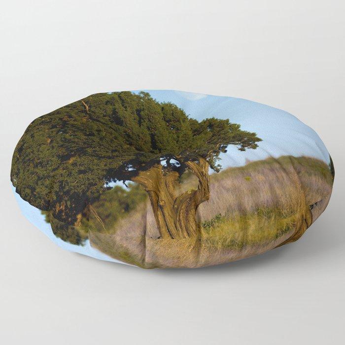 Juniper Moon-Colorado Floor Pillow