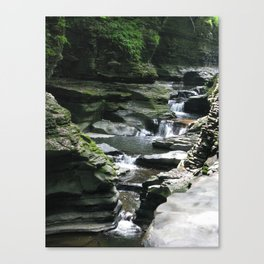 The Work of Water Canvas Print