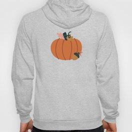 Fall Pumpkin Field Hoody