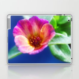 Pink Portulaca Flower Laptop & iPad Skin