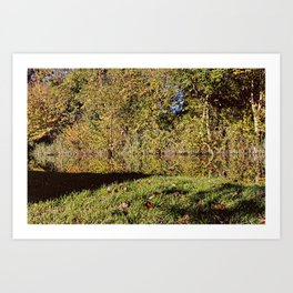 Autumn Oxford Canal Reflections Art Print