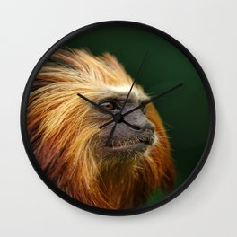 Golden Headed Lion Tamarin Profile Wall Clock