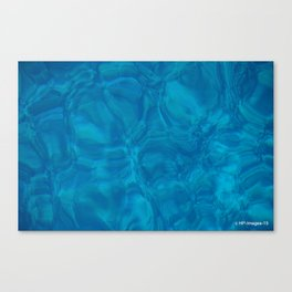 Waters of Hawaii Canvas Print