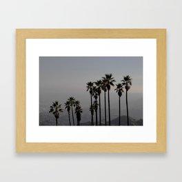 California | Palm Trees in Griffith Park Framed Art Print