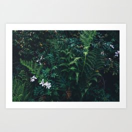 Fleurs Vertes Art Print