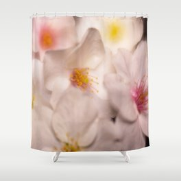 Cluster of Soft White Dogwood Flowers Shower Curtain