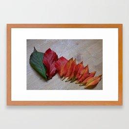 Color Transition Framed Art Print