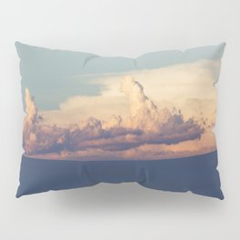 Desert Lullaby Pillow Sham