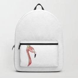 Flamingo in a Beanie Backpack