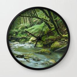 River through lush rainforest in Great Otway NP, Victoria, Australia Wall Clock