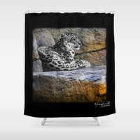 snow leopard Shower Curtains featuring Snow Leopard by Jennifer Rose Cotts Photography