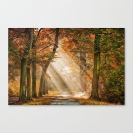 nature sun Canvas Print