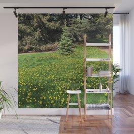 Daffodils and pine Wall Mural