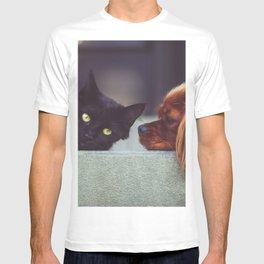 CAT - DOG - LYING - DOWN - ANIMALS - FRIENDS - PHOTOGRAPHY T-shirt