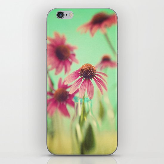 The Coneflowers iPhone & iPod Skin