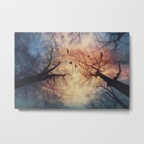 phenomenons Metal Print