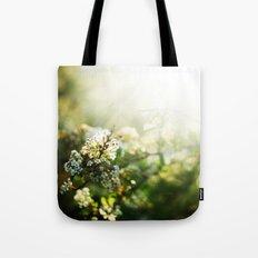 summer light  Tote Bag