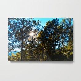 Sun Peeking Through Trees Metal Print