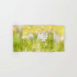 White Ornithogalum nutans pretty bloom Hand & Bath Towel