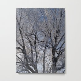 Winter Frozen Tree Metal Print