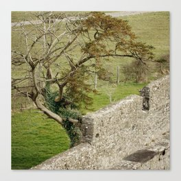 Outside the wall Canvas Print