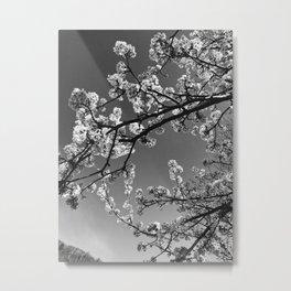 Blossoms at Chimney Rock Metal Print