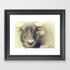 Serious Framed Art Print