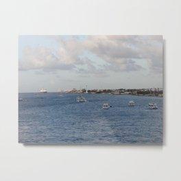 Cozumel Coastline Metal Print