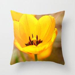 Golden Chalice Throw Pillow