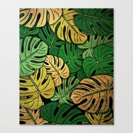 Grunge Monstera Leaves Canvas Print