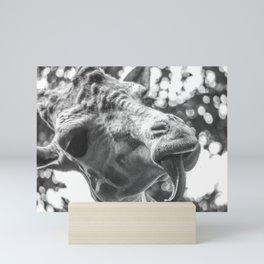 Giraffe Licked Mini Art Print
