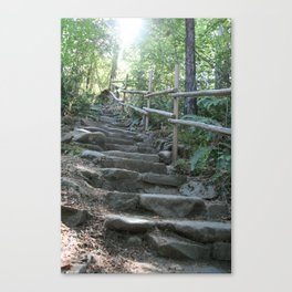 Stepping Up Canvas Print