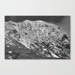 Fresh Snow in Portage Valley, Alaska - B & W Canvas Print
