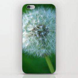 Wishful Thinking iPhone Skin