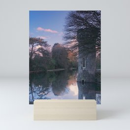 Sunset, Johnstown Castle, Co. Wexford, Ireland Mini Art Print