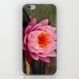 Shades of pink and orange iPhone Skin