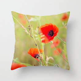 Tender shot of red poppies Throw Pillow