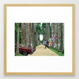 A Different Kind of Jardim Botanico Framed Art Print