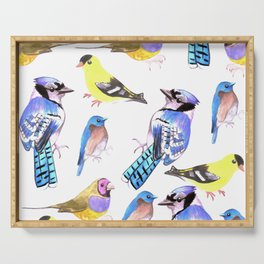 Bird lover- Birds in tetrad color scheme Serving Tray