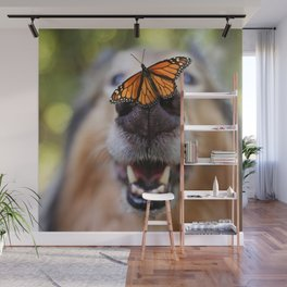 Dog with a butterfly on the nose Wall Mural