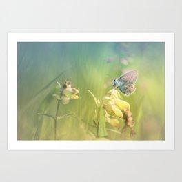 Dreamy serenity Art Print