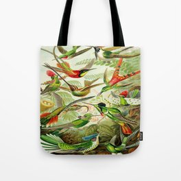 Kunstformen der Natur (Art Forms in Nature)a book of lithographic and halftones. Hummingbirds Tote Bag